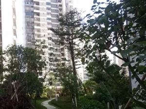 永盛绿洲电梯小区房,148方、四房二厅、三面采光、环境舒适
