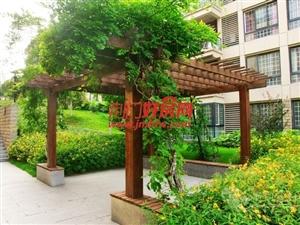 香格里拉7楼98平米2房2厅带60平方米露台卖37万
