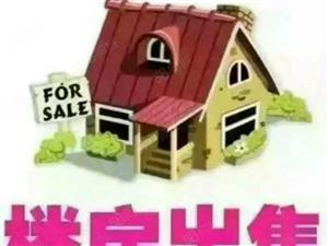 精品二室房屋出售,先到先得。