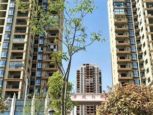 华城新都,太阳城隔壁,115平电梯3房2厅2卫,仅售43万