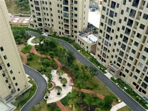 绿和家园精致2室可该3室业主诚心出售