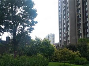 天翔花园小高层,136平带储藏室双气房