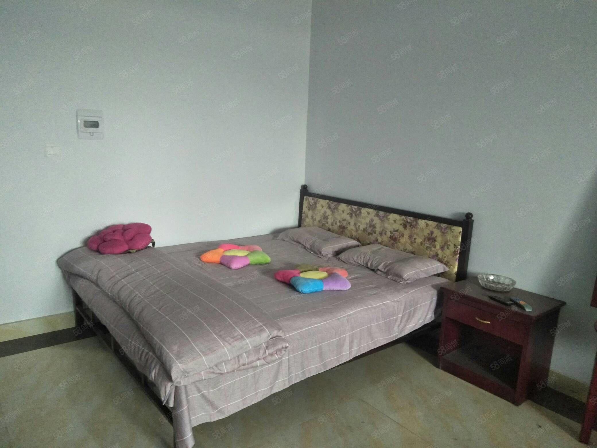 急租南门单身公寓一室一厅精装修拎包入住交通方便