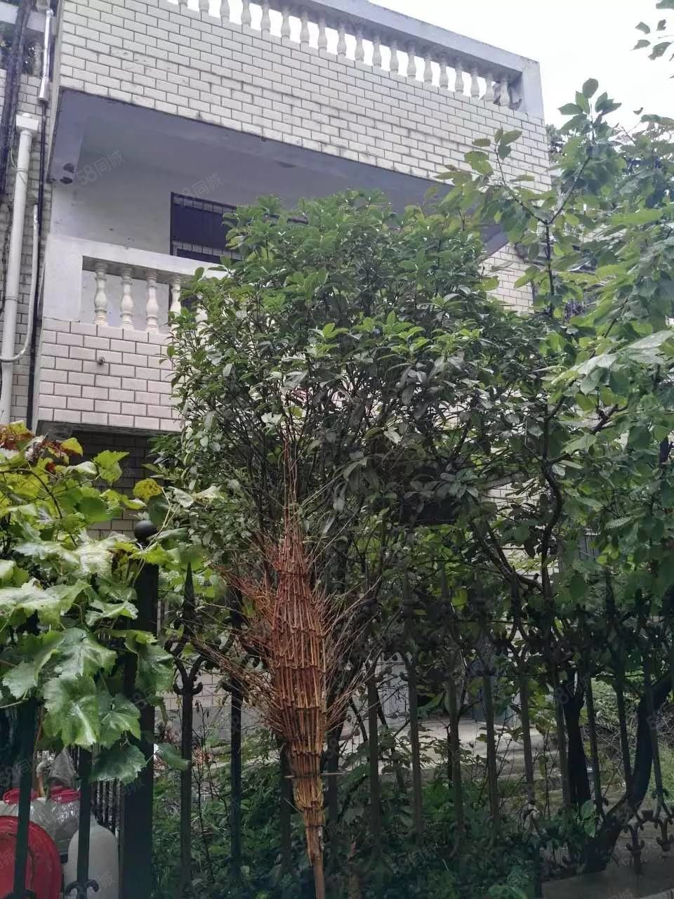 芙蓉街南段地税小区联排别墅,毛坯,有一间地上车库,急售。