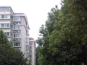 舜泰园3室1厅118平1700元