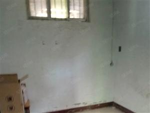 中心路,武装部附近独院,3间1层,可住,可当工作室