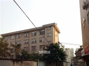 新元城市花园4室2厅1卫