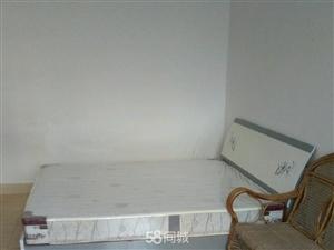 新西华路1室1厅0卫