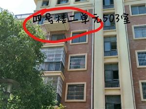 徽商国际城3室2厅2卫2阳台