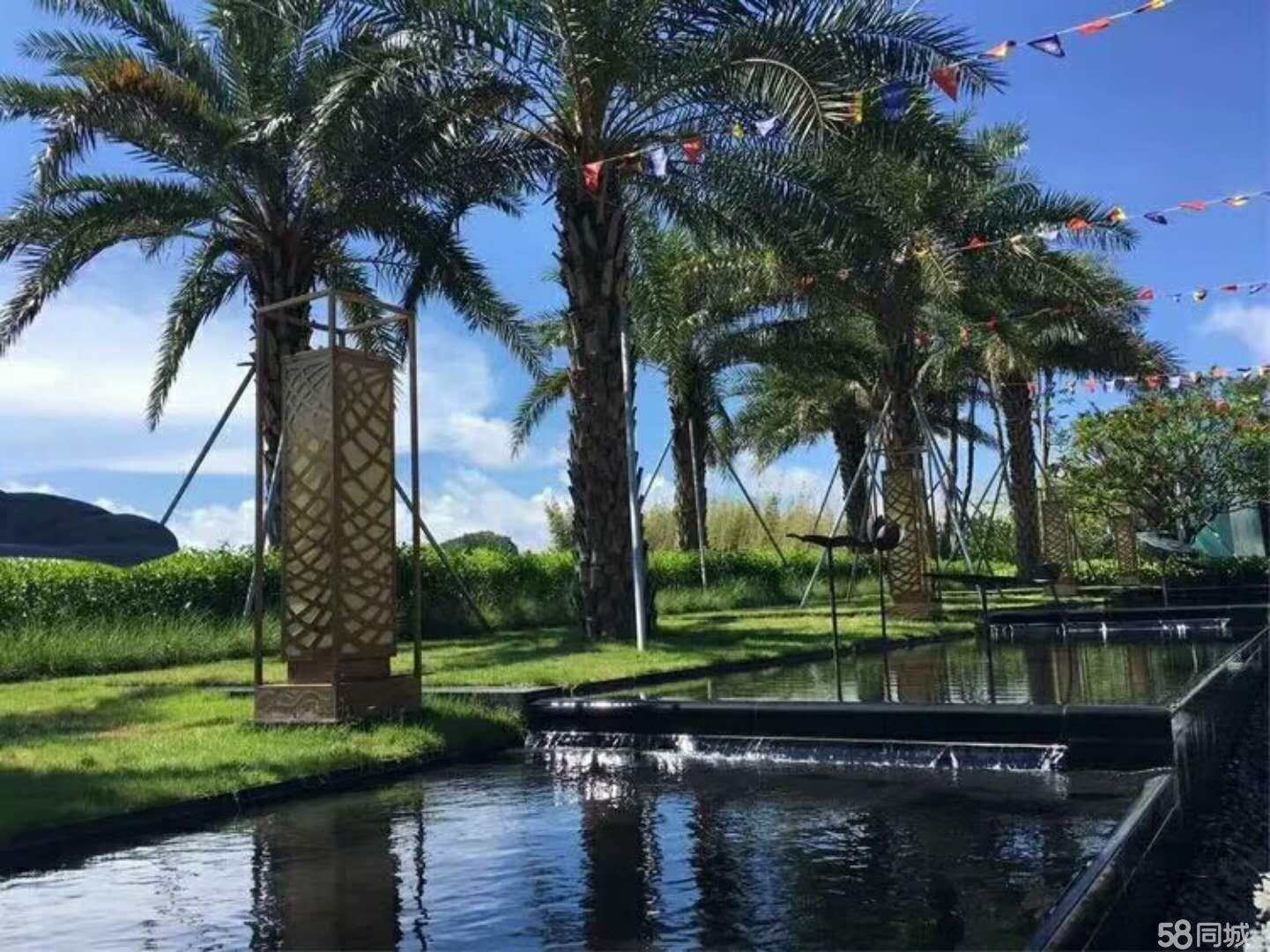 真海景房有阳台有泳池环境好首付五成不限购
