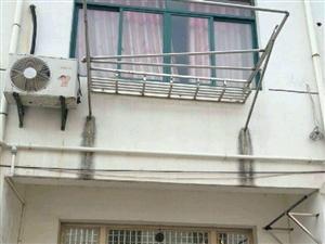 陶辛镇芮村大队杨村小区3室1厅1卫