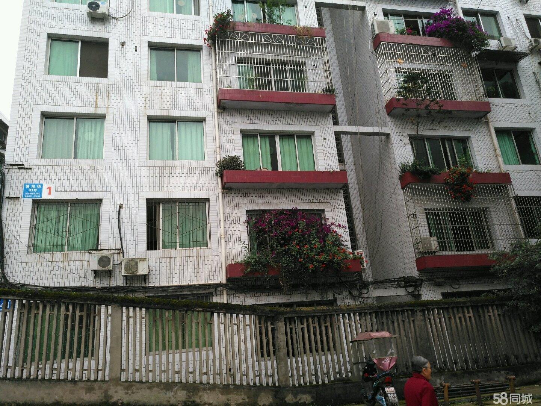 蓬溪县食品厂小区3室2厅2卫