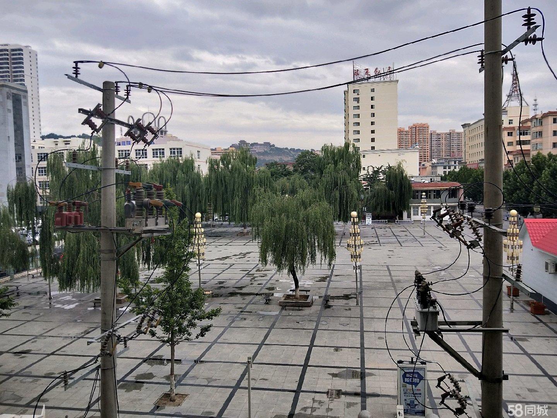 新華小區統辦樓隔壁(南側)