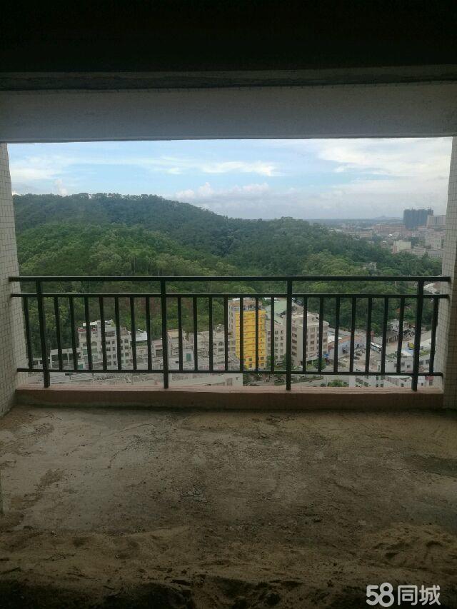 超抵手小区房仅售3400/�O莉莱江城4室2厅2卫