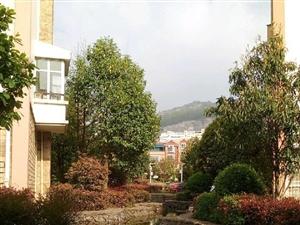 龙凤庄园3室2厅2卫环境幽雅价格便宜2100一平米
