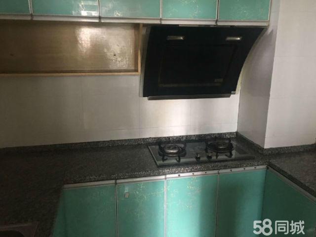 河东新区奥城大城际2室2厅75平米精装修押一付三