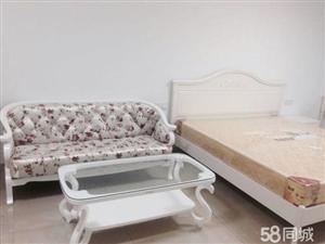 新罗万宝广场SO1室1厅55平米中等装修押二付一