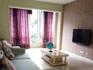 南岸西区鑫空间价格优质精装两室限时出租等你来住!!!
