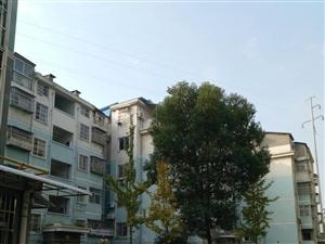 富川家苑7楼新房可按揭