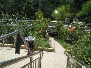 金润嘉园,一楼带个院子,环境优雅舒适,精致装修拎包即住