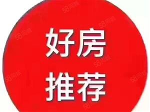 鑫荣小区免税稀缺2房好楼层读三中九龙城世纪广场