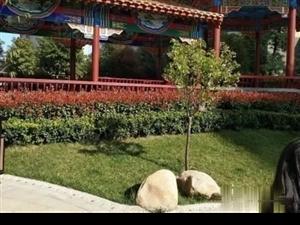 儒林文化苑南都路与范蠡路交叉口采光好温馨三室户型方正