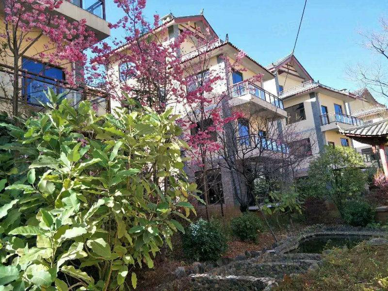 50平精装公寓49万,每月固定收益3200元,丽江假日