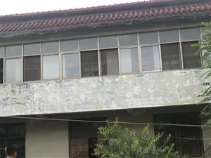澳门威尼斯人开户新区闵子小区,独栋别墅,带院