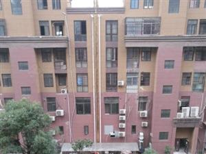 阜南锦绣名城4楼电梯洋房共9层105平方毛坯70万