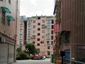 心家泊复式楼卖7楼送8楼加大平台江景房双证在手可按揭