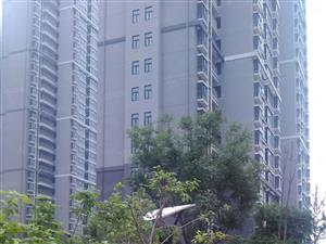 zhongyuan人家现房三房可首付10万要证不限号