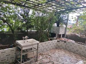 远林名苑5室带屋顶花园实用面积大马上安电梯了
