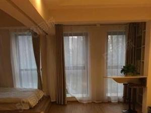 海亮公寓豪华装修1室2张床房子特别上档次