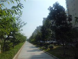 澳门太阳城网站市锦江名城143平3房2厅精装带家具拎包直接入住