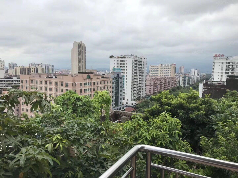 碧桂圆别墅,靓装修,仅租4800适合居住或办公