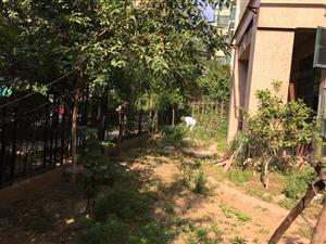 宁东路恒大绿洲一楼带花园100万看房方便