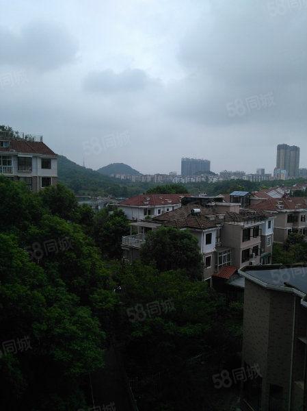 袁山公园旁伯明翰精装三房141个平方月租2400