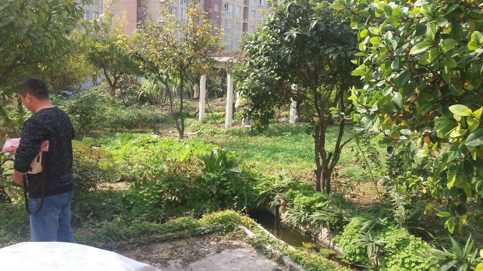 独栋别墅带一亩七分地的大院子