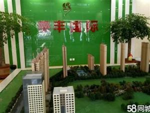 泰丰国际B栋118平米单价4000商品房只卖两天