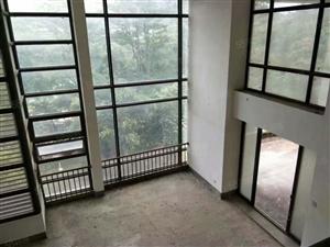 长泰漂流旁电梯高层空中别墅高端大气视野无敌仅此一套