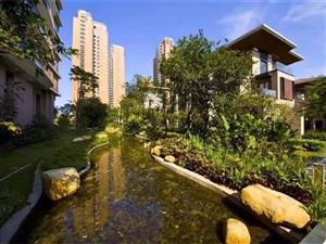 华融琴海湾455平米业主急售1750万各付个税带电梯