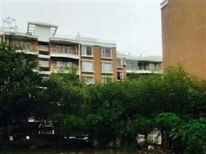 惠民二小学期房护国路红建佳园稀少好房出售单位上的好房