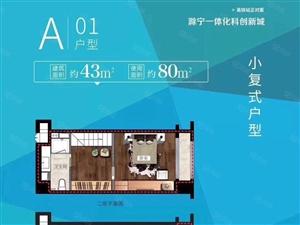 高铁站星荟城复式公寓挑高4.8米首付低