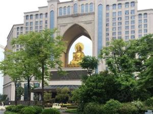 大丰高铁站旁首付十万权健集团百亿开发一手新房一手新房