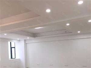 荆楚文化广场48办公区出租,商务中心