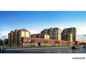 吉利花园紧邻学府,未来城市发展中心超大豪宅!
