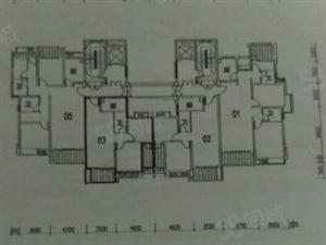 建发悦城电梯房毛坯中层,单价6590一平,买到就是赚到!