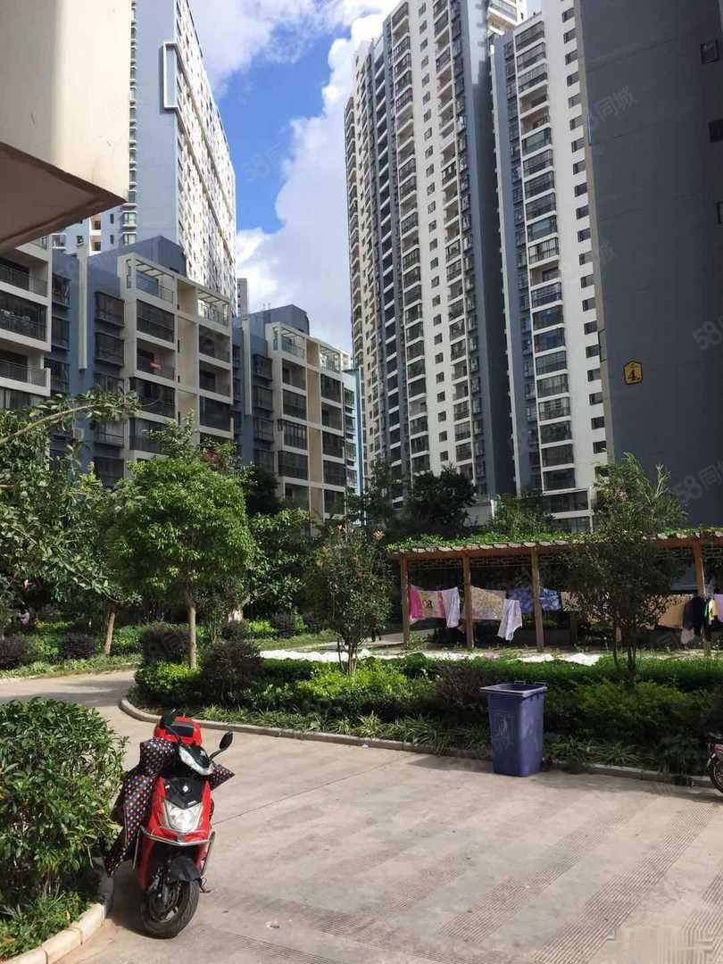 东南新城全新精装的豪华单身公寓南北通透随时看房拎包即可入住