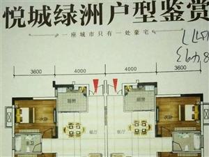 悦城绿洲小户型电梯房