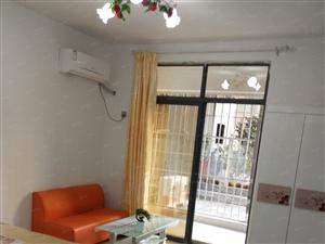 房东免费直租:新城国际(碧湖万达旁)月付拎包入住的精装公寓